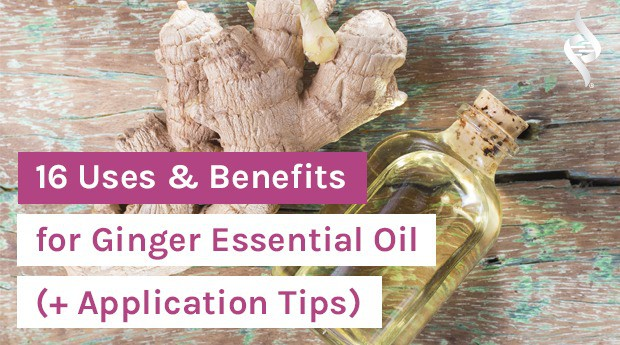 ginger and ginger essential oil with article title