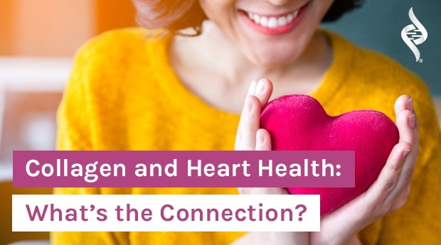 woman holding heart in hands with article title: Collagen and Heart Health