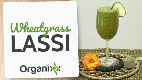 Wheatgrass Lassi