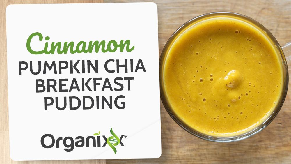 Cinnamon Pumpkin Chia Breakfast Pudding