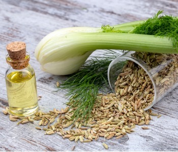 bottle-of-fennel-essential-oil-with-fresh-green-fennel-and-seeds