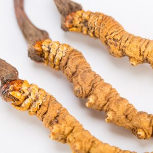 Cordyceps mushroom - Multiple studies show that cordyceps can lower blood glucose levels