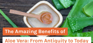 The Amazing Benefits of Aloe Vera: From Antiquity to Today
